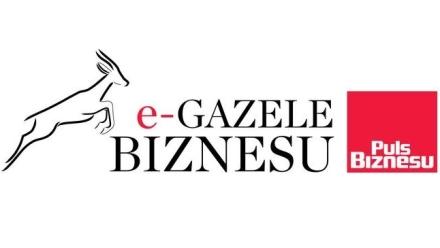 e-gazele biznesu